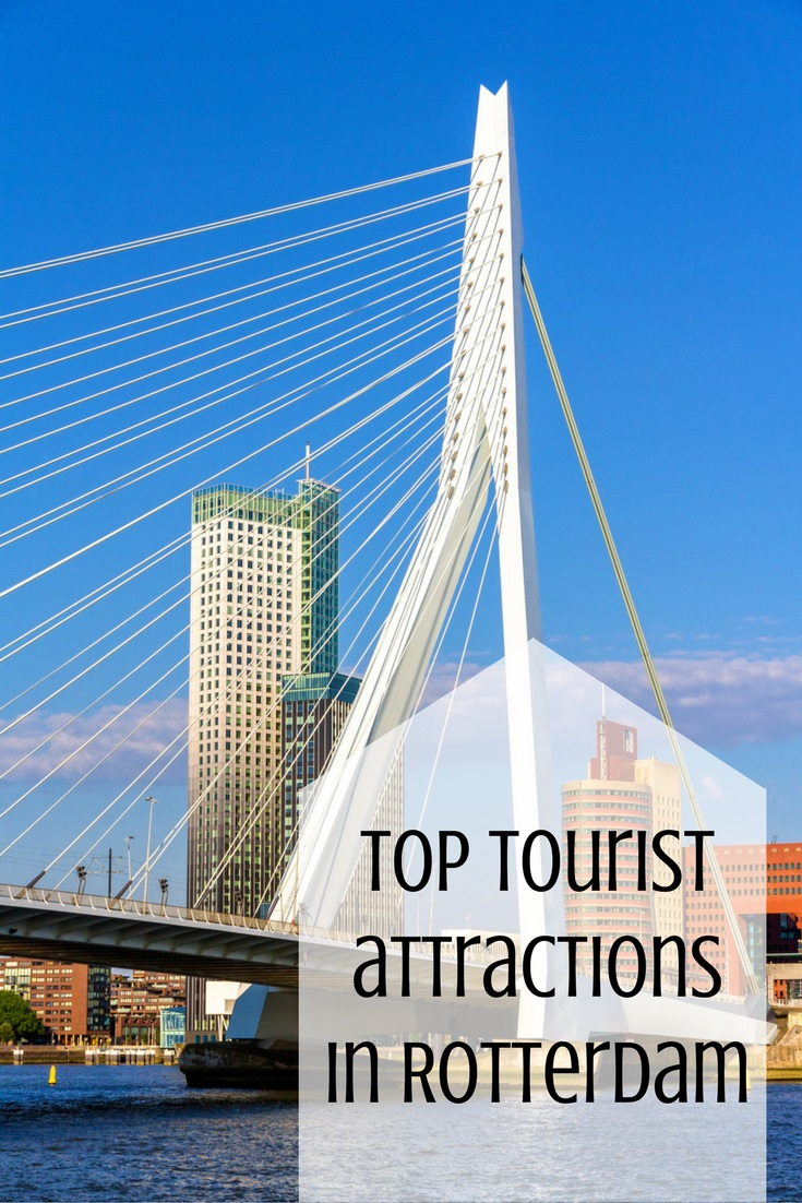 Discover the best of Rotterdam