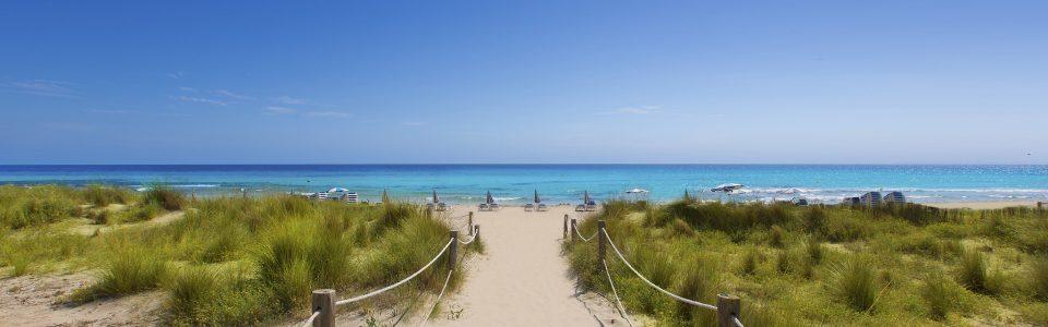 A sandy walkway towards a clear blue sea in Alaior Cala Son Bou in Menorca