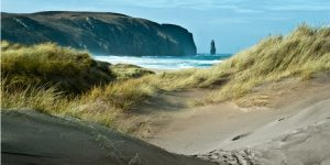 an image of the giant sea stack at Sandwood Bay, Scotland, through the sand dunes