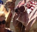 Mr and Mrs Fothergill camel racing in Doha Qatar