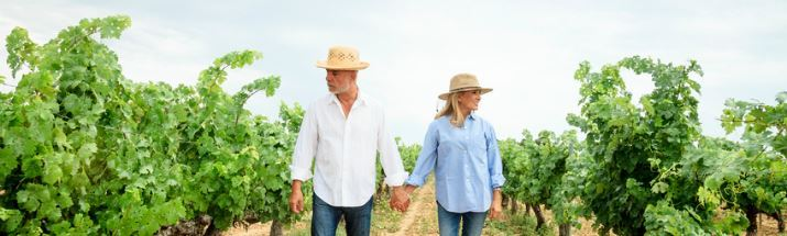 Couple walk through a vineyard