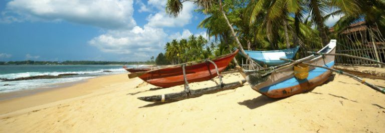 Fishing-boats-under-the-palms-on-Sri-Lankan-Beach