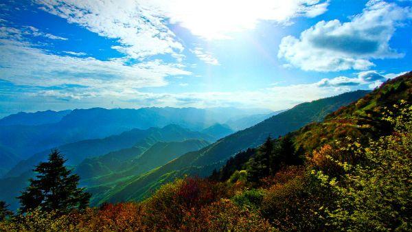 Shennongjia Forest, China