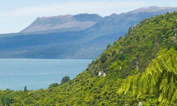 Rotorua hillscape and hills