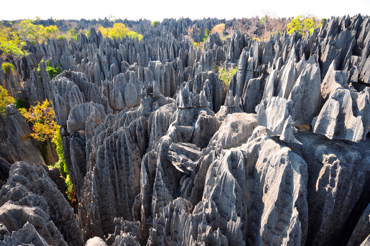 Tsingy de Bemaraha in Madagascar