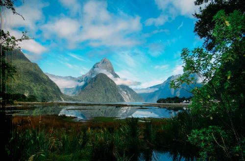 New Zealand travel insurance