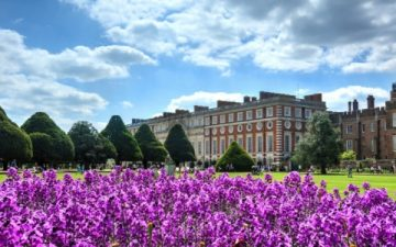 hampton court palace grounds in summer time