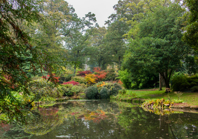Japanese Garden, Exbury