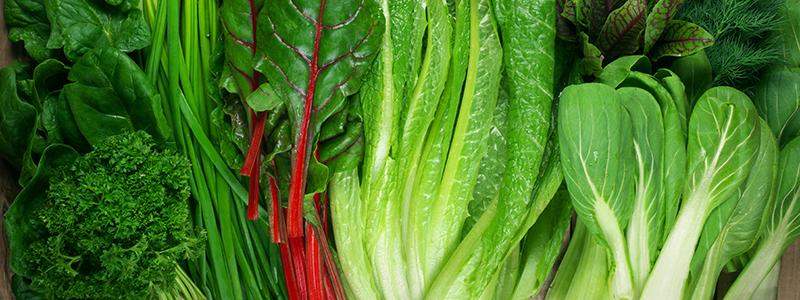 Various leafy vegetables