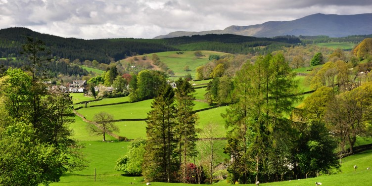 View of Claife Heights