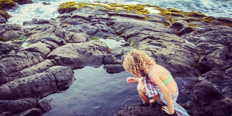 Child exploring tidepools